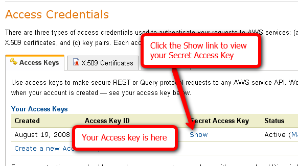 Click the Show link to view your Secret Access Key. Your Access key is here.